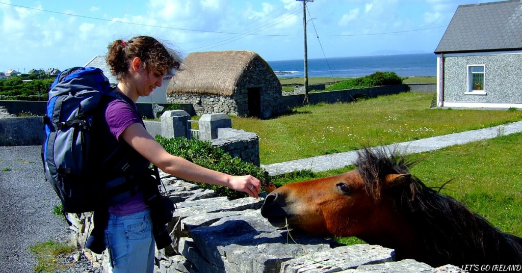 Ein Pferd füttern auf den Aran Islands