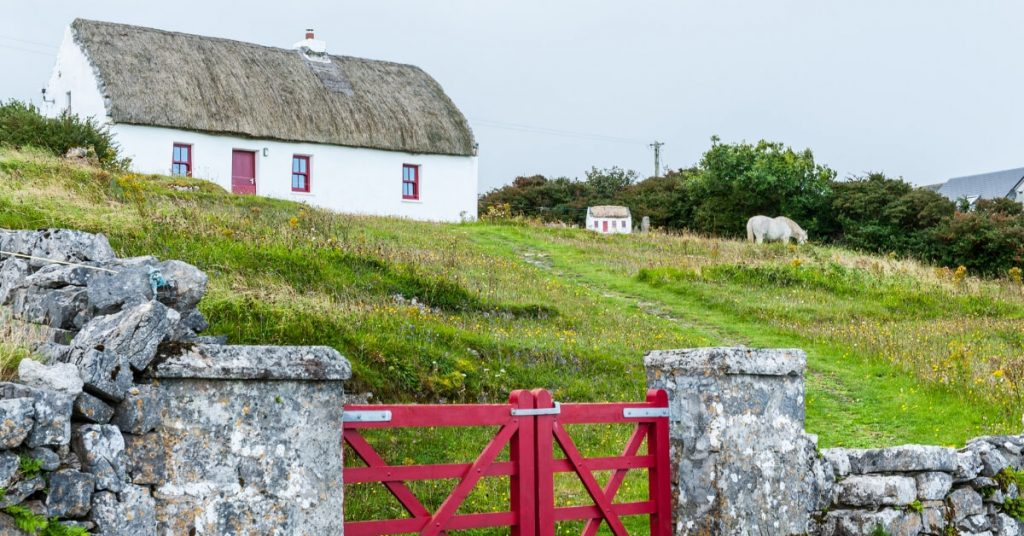 A thatched cottage with a horse, Ireland