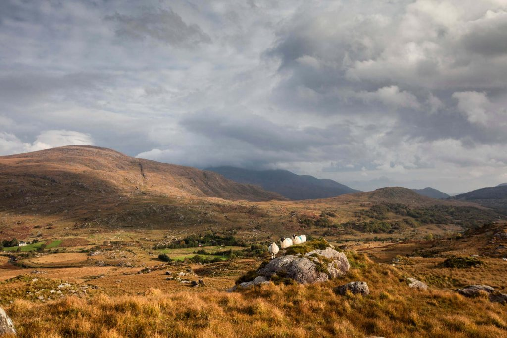 The Black Valley, County Kerry, Ireland  on a blustery day.