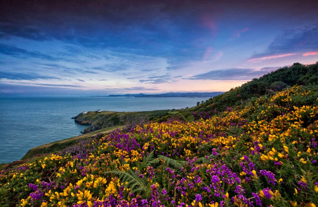 Howth Head, County Dublin, Ireland